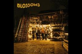 Blossoms artwork