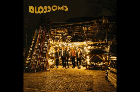 Blossoms artwork